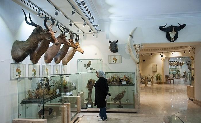ایران برنده یکی از مهمترین جوایز موزهای در جهان