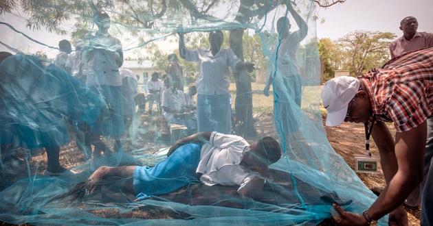 با پیشگیری از مالاریا، جان افراد در معرض خطر را نجات دهید
